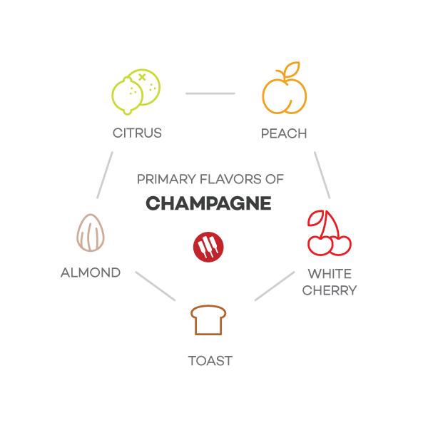 Champagne-taste-notes